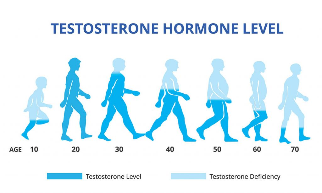 How testosterone levels decline by age